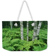 Silvery Birch Bark Gleams From A Bed Weekender Tote Bag