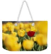 Single Red Tulip Among Yellow Tulips Weekender Tote Bag
