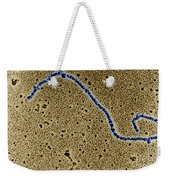 Single Strand Of Dna Weekender Tote Bag