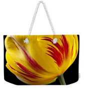 Single Yellow And Red Tulip Weekender Tote Bag