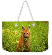 Sitting Wolf Weekender Tote Bag