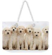 Six Labradoodle Pups Weekender Tote Bag