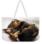 Sleeper Weekender Tote Bag