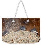 Sleeping Barn Swallows Weekender Tote Bag