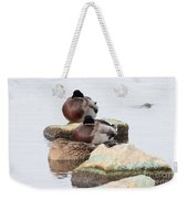 Sleeping Mallards Weekender Tote Bag