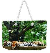 Sleeping Tiger Weekender Tote Bag