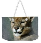 Slumbering Mountain Lion Weekender Tote Bag