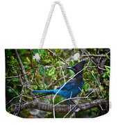 Small Blue Jay Of California Weekender Tote Bag