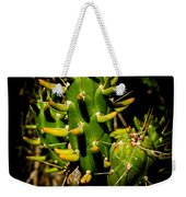 Small Green Cactus Weekender Tote Bag