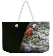 Small Red Insect Weekender Tote Bag