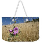 Smaller Tree-mallow Lavatera Cretica Weekender Tote Bag