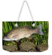 Smallmouth Bass Micropterus Dolomieu Weekender Tote Bag