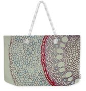 Smilax Endodermis Weekender Tote Bag