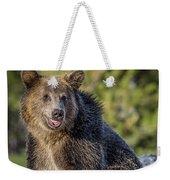 Smiling Grizzly Weekender Tote Bag