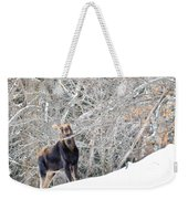 Smiling Moose Weekender Tote Bag