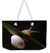 Snail Weekender Tote Bag by Stelios Kleanthous
