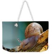 Snail Traversing Weekender Tote Bag