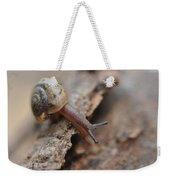 Snail's Tale Weekender Tote Bag
