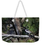 Snakebird At The Rookery Weekender Tote Bag