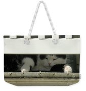 Snoozing On The Porch Weekender Tote Bag