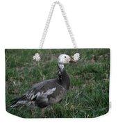 Snow Goose Blue Morph Weekender Tote Bag