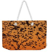 Snow Goose Migration Weekender Tote Bag by Mircea Costina Photography