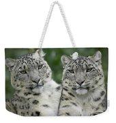 Snow Leopard Pair Sitting Weekender Tote Bag