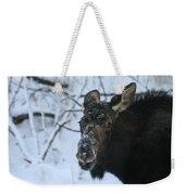 Snowy Nose Weekender Tote Bag