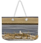 Snowy Owl Perched Frozenpond Weekender Tote Bag
