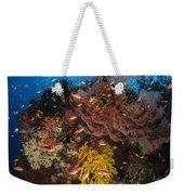 Soft Coral And Sea Fan, Fiji Weekender Tote Bag