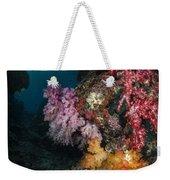 Soft Coral And Sunburst In Raja Ampat Weekender Tote Bag
