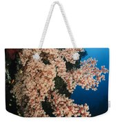 Soft Coral On The Liberty Wreck, Bali Weekender Tote Bag