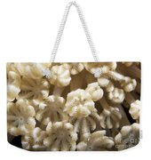 Soft Coral Polyps Feeding, Papua New Weekender Tote Bag