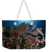 Soft Coral Reef Seascape, Indonesia Weekender Tote Bag