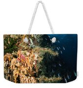 Soft Coral Seascape And Rainbow Weekender Tote Bag