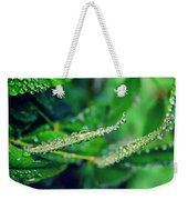 Water Droplets On Green Leaves Weekender Tote Bag