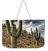 Sonoran Desert II Weekender Tote Bag