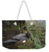 Sooty Albatross Phoebetria Fusca Weekender Tote Bag