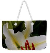 Sounding On Forever Weekender Tote Bag by Sharon Mau