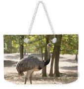 South American Rhea Weekender Tote Bag