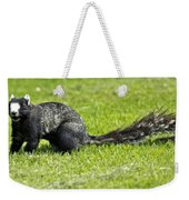 Southern Fox Squirrel Weekender Tote Bag by Phill Doherty