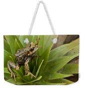 Southern Frog Newly Discovered Species Ecuador Weekender Tote Bag