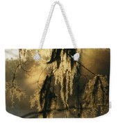 Spanish Moss Hanging From A Tree Branch Weekender Tote Bag