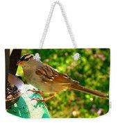 Sparrow In Morning Light  Weekender Tote Bag