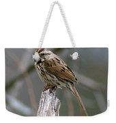 Sparrow Iv Weekender Tote Bag