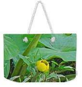 Spatterdock Wild Yellow Water Lily - Nuphar Lutea Weekender Tote Bag