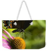 Spicebush Swallowtail Butterfly And Coneflower Weekender Tote Bag