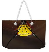 Spiked Spider Gasteracantha Sp In Web Weekender Tote Bag