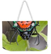 Spinybacked Orbweaver Spider Solomon Weekender Tote Bag