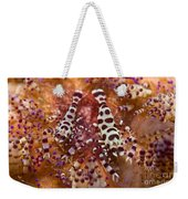 Spotted Periclimenes Colemani Shrimp Weekender Tote Bag